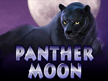 Panther Moon Азартные игры тут